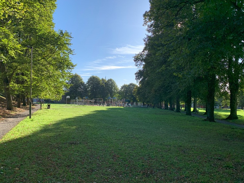 An aveue of trees to one side of Greencroft Park.