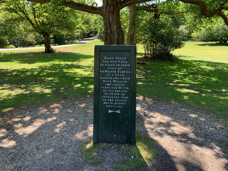 A close up of the Rufus Stone in the New Forest with an oak tree behinnd it.
