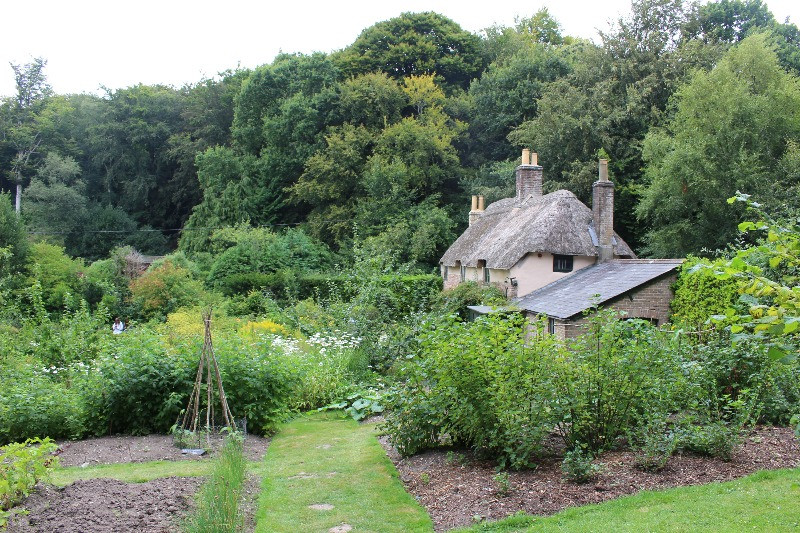 A large garden around the tiny cottage