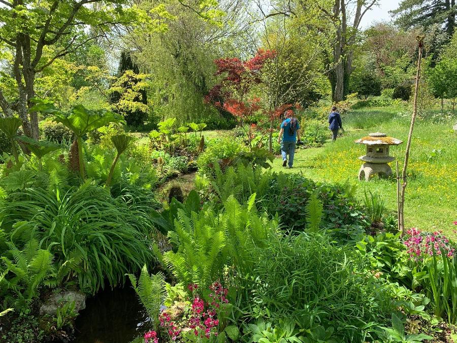 Two people walking through lush gardens