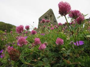 IONA ABBEY AND NUNNERY ON THE ISLE OF IONA, SCOTLAND
