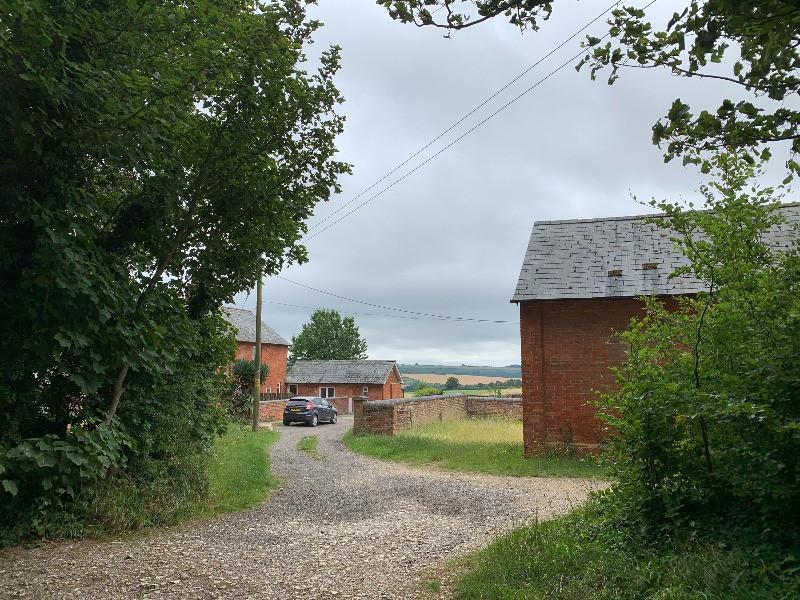 Farm buildings behind trees.