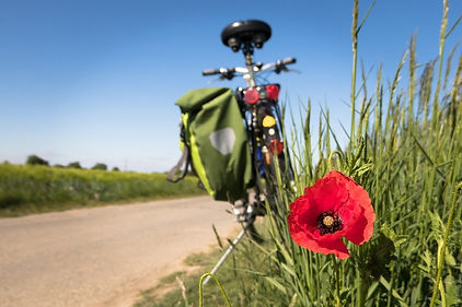 cycling-salisbury-wiltshire-guide_edited