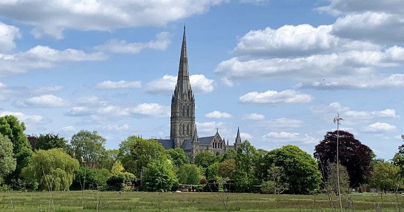 Salisbury Cathedral surrounded by trees across a grassy meadow.