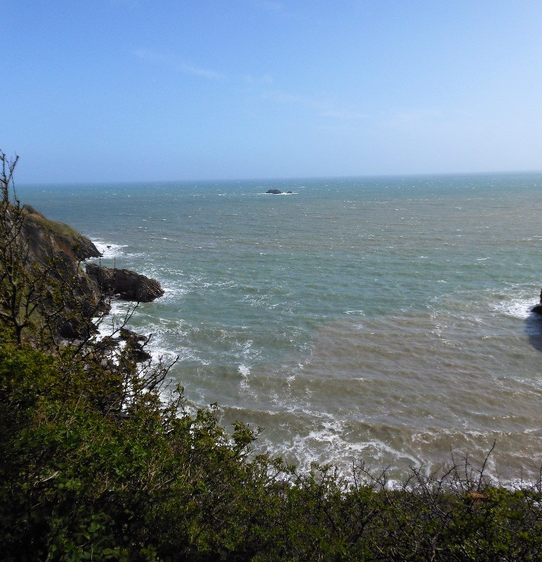 The sea from the grounds of oleton Fishacre
