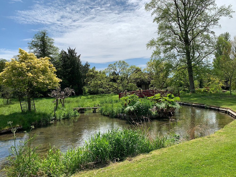 A river running through Heale Gardens