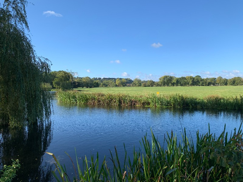 The River Avon with the water meadows behind it