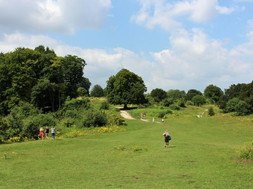 VISITING DANEBURY IRON AGE HILL FORT, HAMPSHIRE