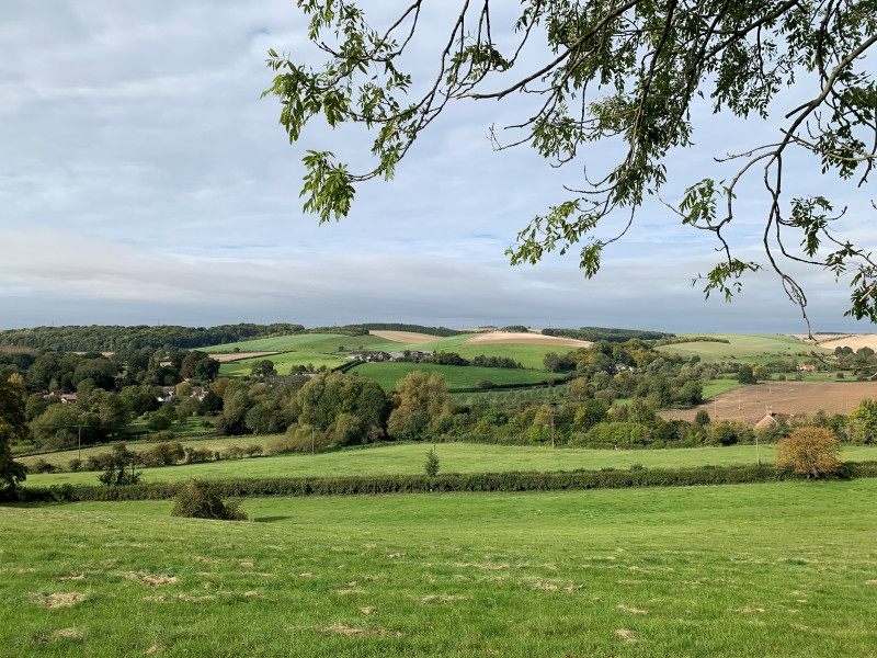 A view over the Woodford Valley.