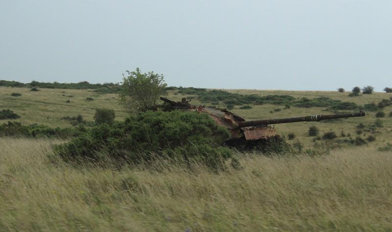 A tank behind a bush on Salisbury Plain.