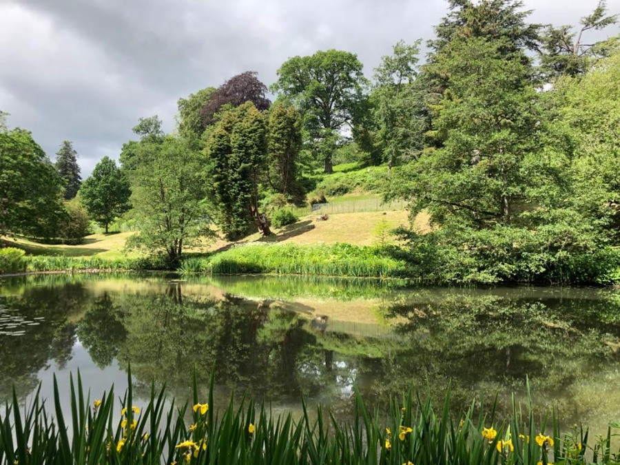 Lake and tress in the grounds of castle powis