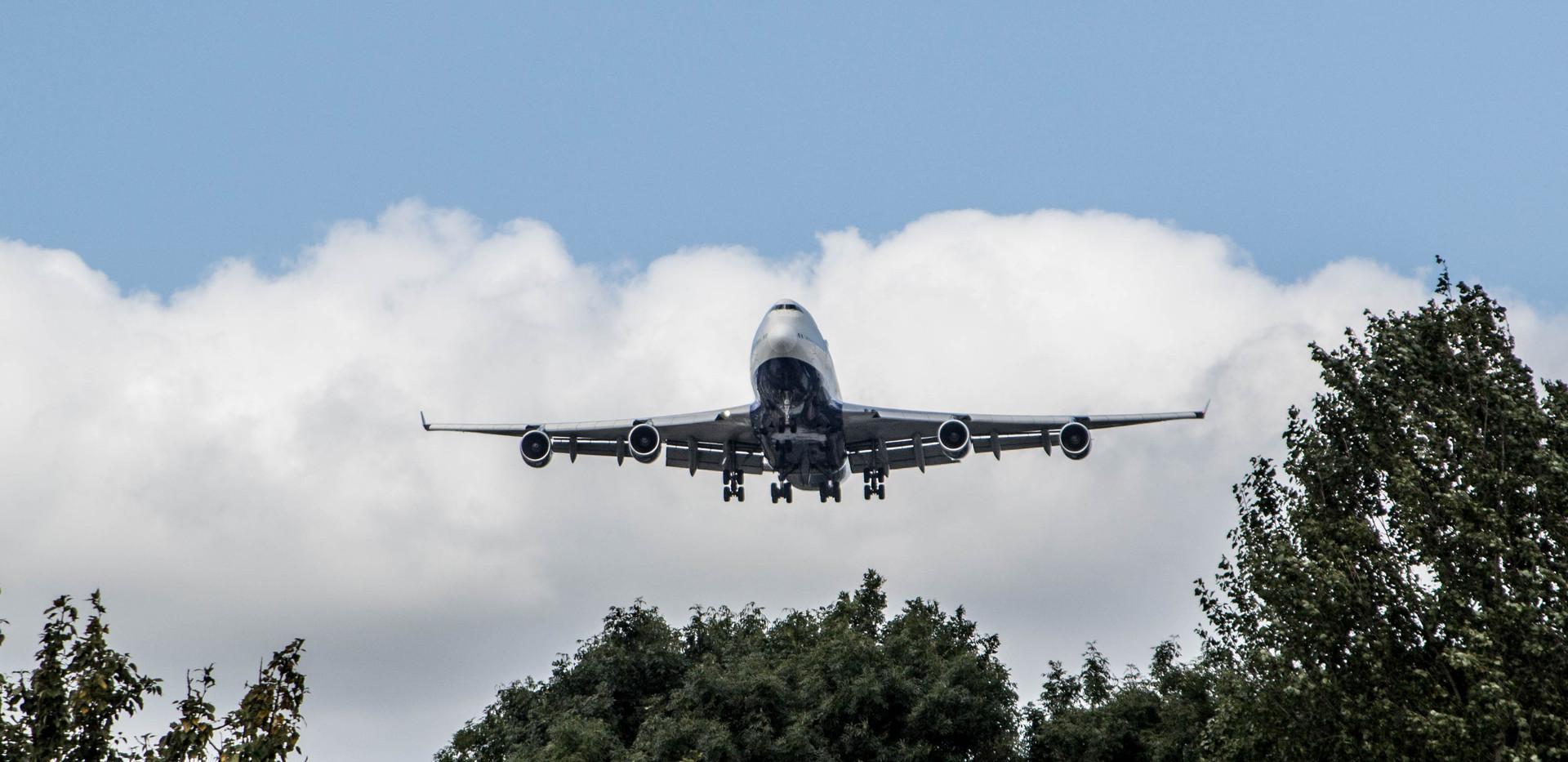 747-trees-1-of-1_37503595016_o.jpg