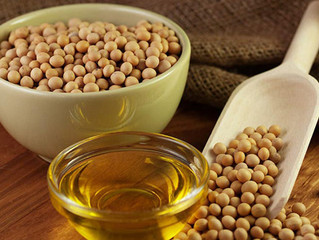 Unsatisfactory Result of Okoer's Soybean Oil Evaluation in China
