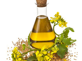Is Canola Oil the Same as Rapeseed Oil?