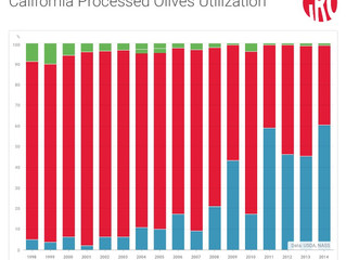 California's Olive Oil Revolution
