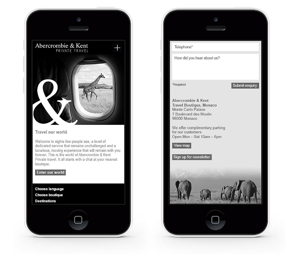 Website mock up showing home and contact pages on mobile devices