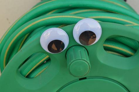 Google eye hose.jpg