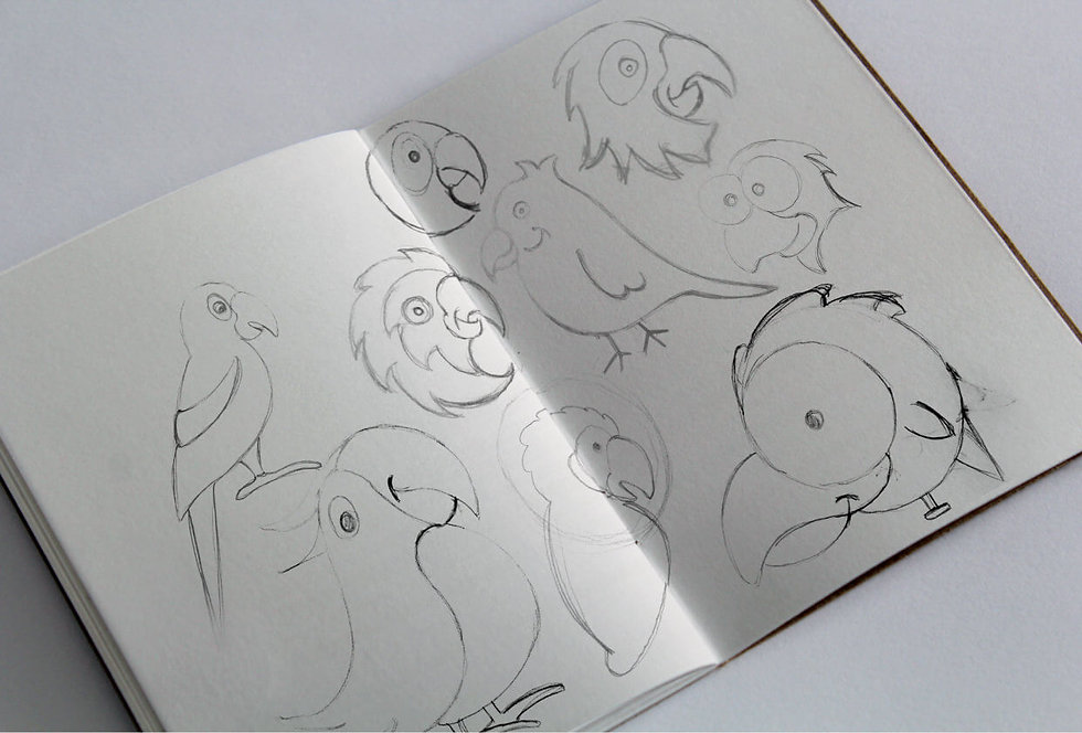 Sketches of initial parrot character ideas