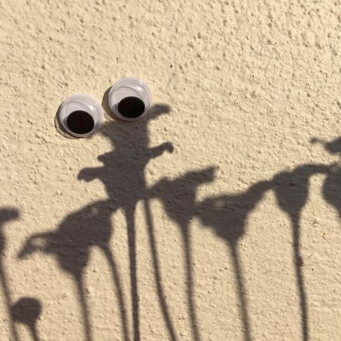 Google eye shadow 2.jpg