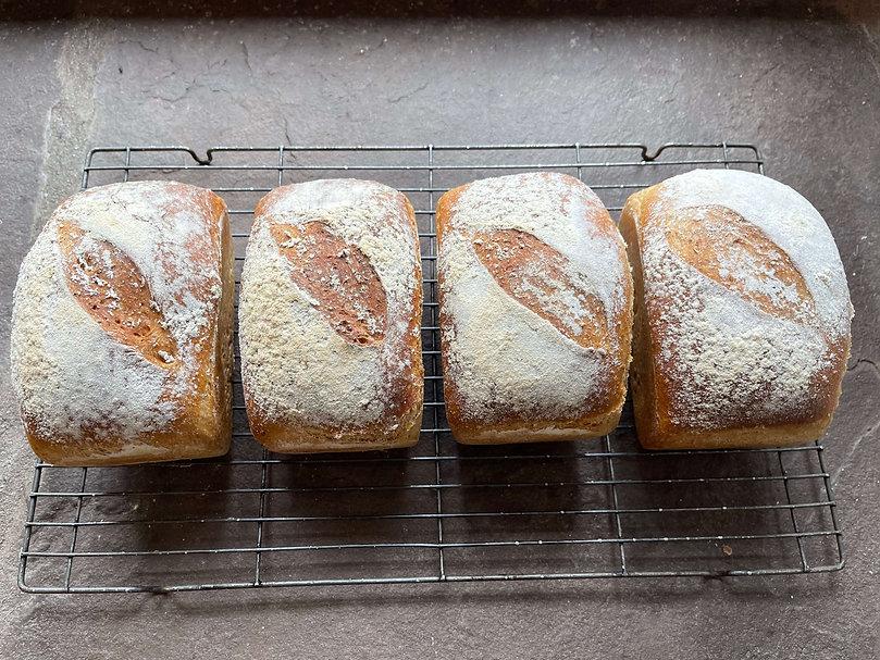 Loaves of bread.jpeg