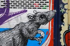 Graffiti photography 34.jpg