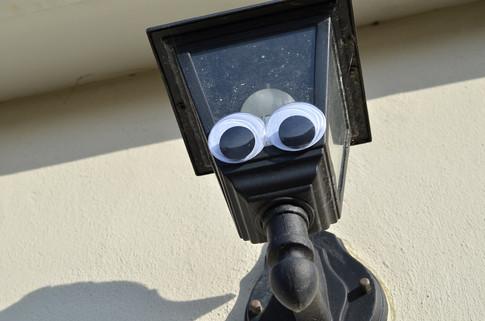 Google eye light.jpg