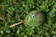 Googly eye fruit.jpg