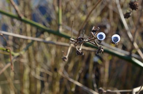 Google eye sticks.jpg