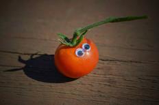 Googly eye tomato.jpg