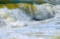 Beach photography 16.jpg