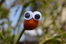 Google eye bud 2.jpg