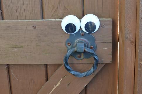 Google eye gate.jpg