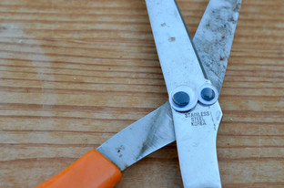 Googly eye scissors.jpg