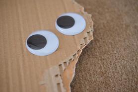 Googley eye renovation 4.jpg