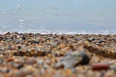 Beach photography 12.jpg