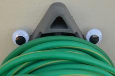 Google eye hose 2.jpg