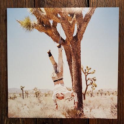 HOAX - Vinyl LP