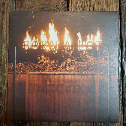 BORN A LOT : Wild Constitution - LP