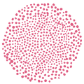 03_Texture_framboise.png