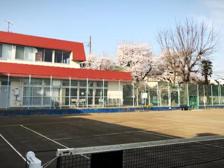 テニスクラブに入会するメリットは?