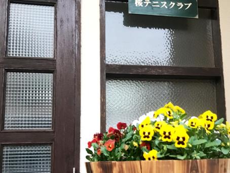 テレビ東京「孤独のグルメ」に登場!