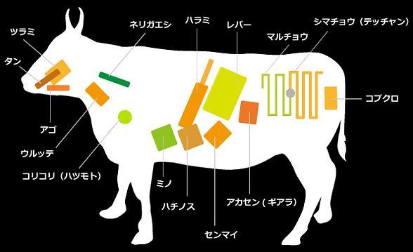 部位表示牛.png