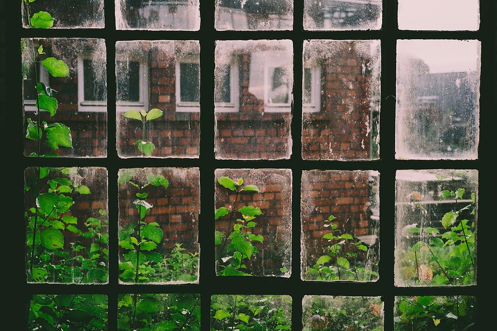 Buildup on windows
