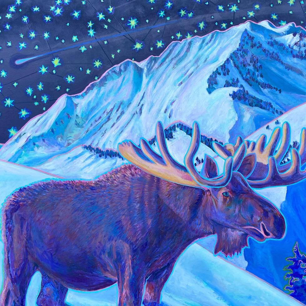 Bull Moose & Mount Superior, 2020