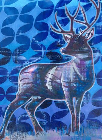 bluedeer.jpg