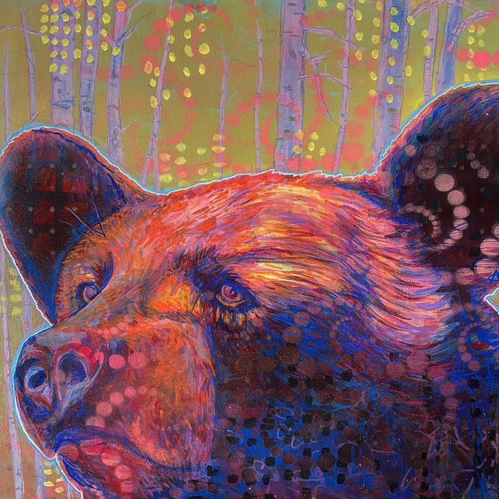 Neon Black Bear, 2020