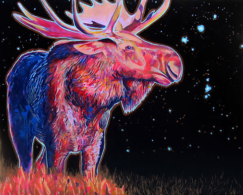 Bull Moose and Orion Nebula, 2019