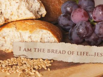Sermon, 11th Sunday after Pentecost