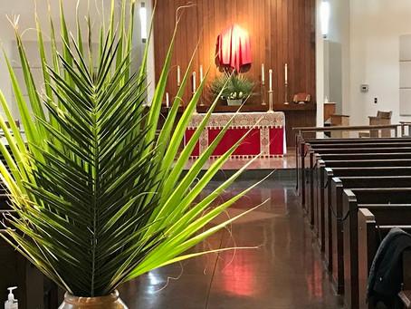 Sermon, Palm Sunday