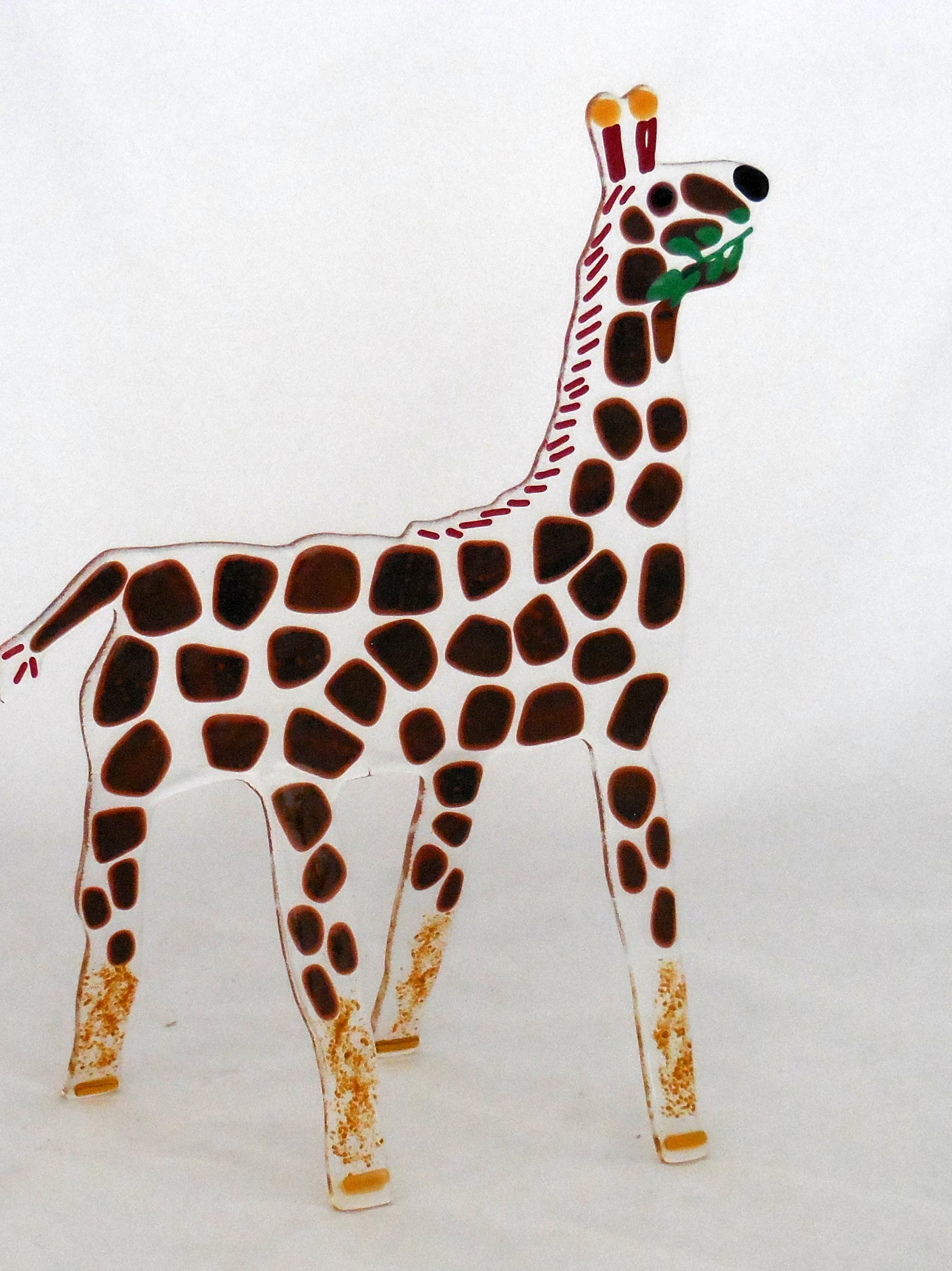 giraffe eating leaves
